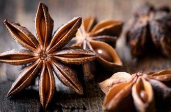 Семена сухого бадьяна