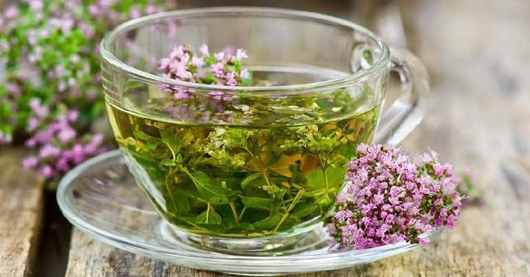 Чай из душицы в чашке