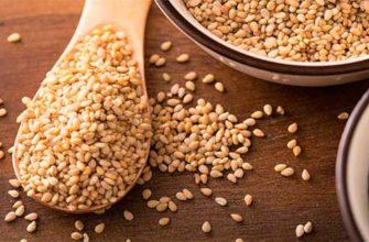 Как принимать семена кунжута