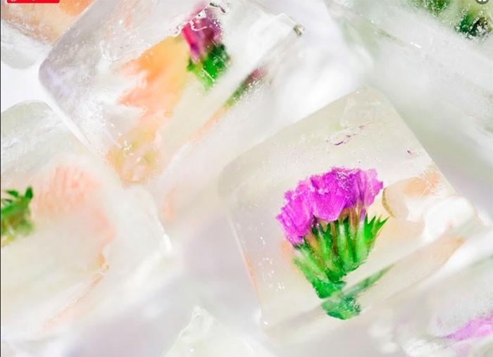 Цветочный лед