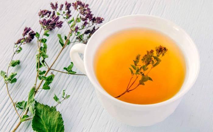 Чай из душицы: полезные свойства и противопоказания