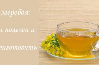 Как приготовить чай из зверобоя