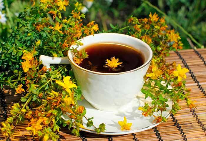 Польза чая из зверобоя