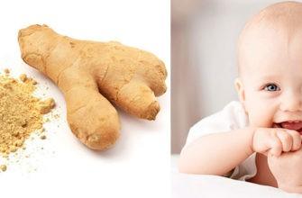 Польза и вред имбиря для ребенка