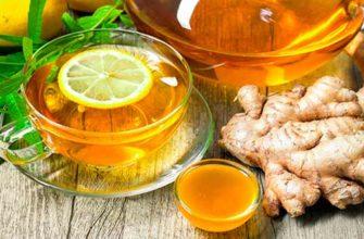 Польза имбиря с медом