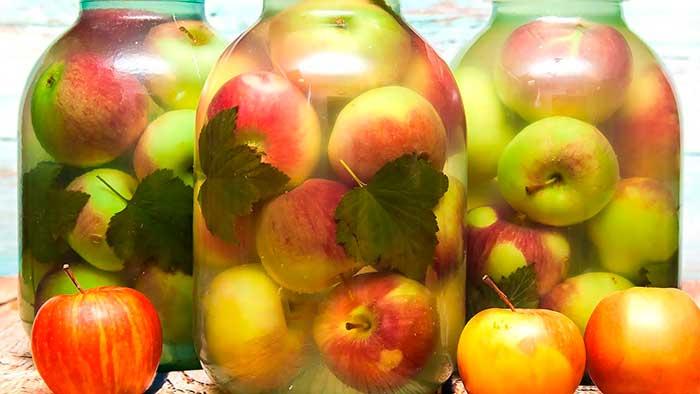 Яблоки с мятой
