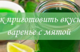 Рецепты варенья с мятой
