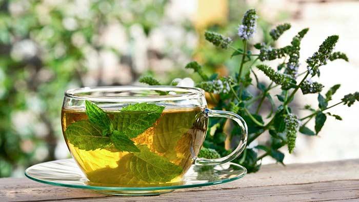 Чай из мяты