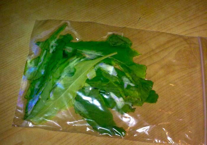 Хранение зелени в пакетах
