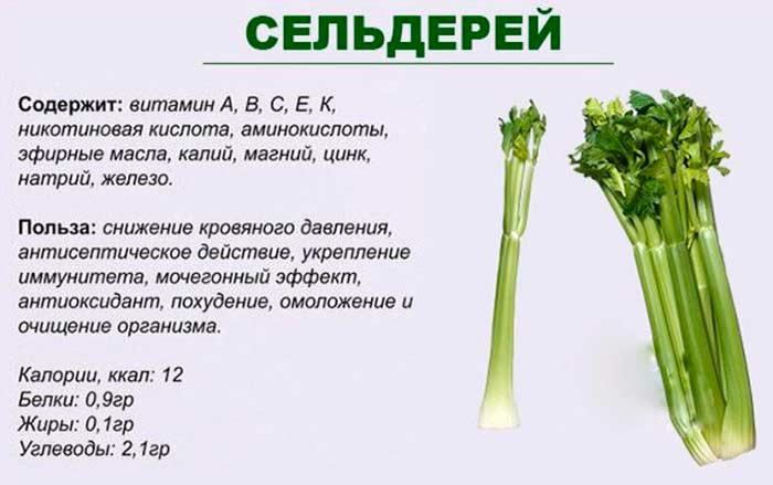 Витамины в сельдерее