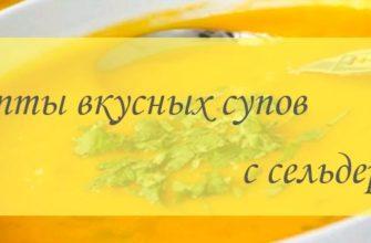 Рецепты супов с сельдереем