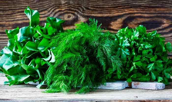 Ассорти из зелени